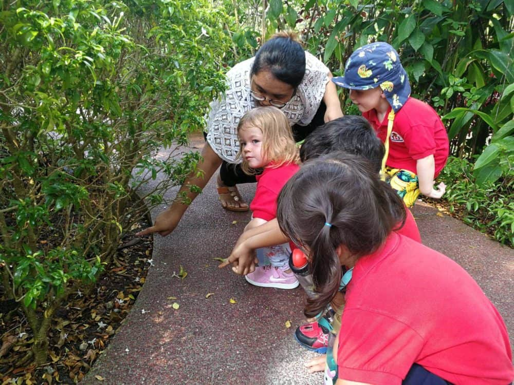 Children outdoor exploration and learning